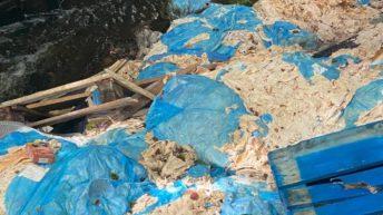 2t of meat waste dumped on Scottish farm