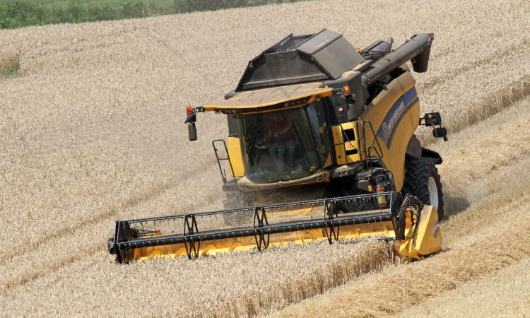 Harvest update: Weather halting progress