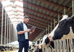 A reliable, high-speed broadband solution for Ireland's rural farming community
