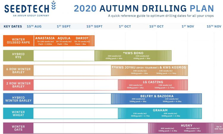 Drilling early this year?