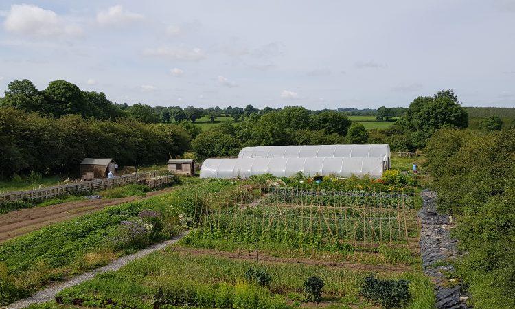 'Interest surge in local food grown using regenerative methods'