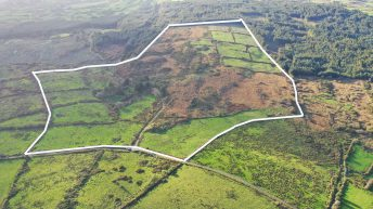Price tag: 73ac farm in west Cork guiding at €3,424/ac