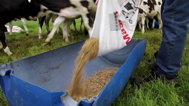 Dairy cost of production index hits trigger point a second time this year