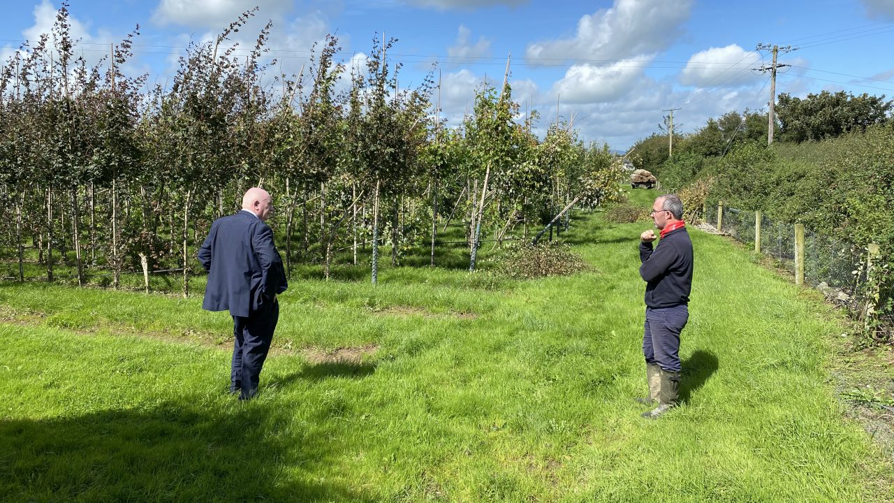 Minister of State urged to push for emergency horticulture fund