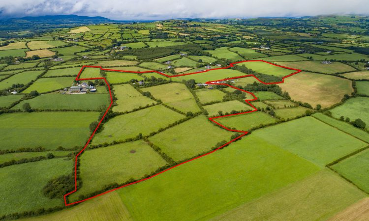 61ac with 'high value' entitlements at Mitchelstown for sale
