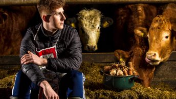 'Helping on farm is something I've grown to appreciate more'