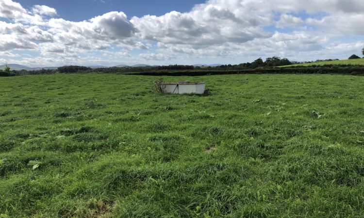 Grassland management: Turning attentions back to building covers