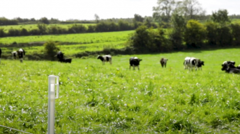 GrowthWatch: Preparations for spring grassland management begin now