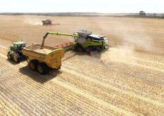Cork to Oz during the pandemic: 'Harvest 2020 better be worth it'
