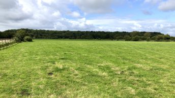 14.5ac agricultural land in Co. Laois 'suitable for a wide number of uses'
