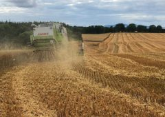 Straw to get the chop in tillage scheme