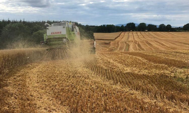 Straw to get the chop in tillage scheme