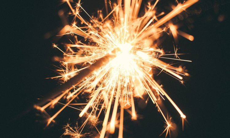 Gardaí warn that 'fireworks can cause great distress to farm animals'