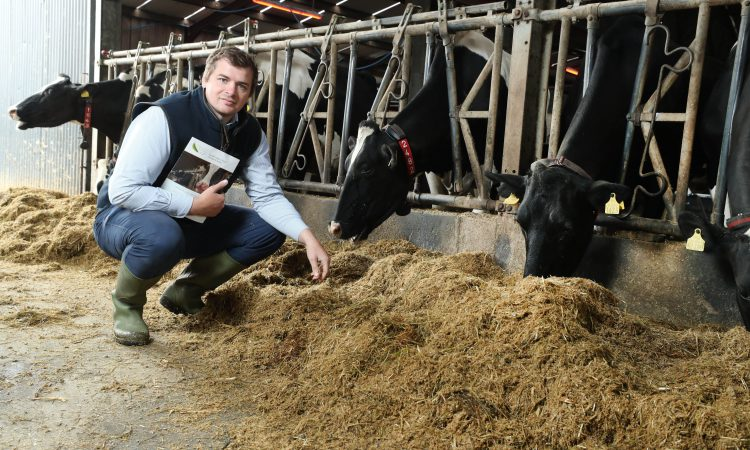 Buffer feeding the dairy cow: Know what you don't know
