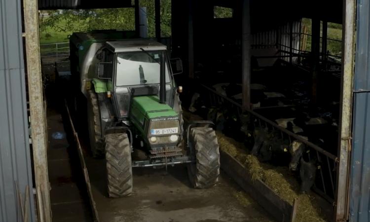 Virtual Teagasc Green Acres Calf to Beef Programme farm walk next Thursday