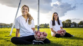 Irish potato sales increase by 24%