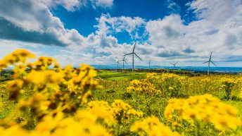 Irish Wind Energy Association rebrands as Wind Energy Ireland