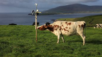 €200k to help west Kerry farmers achieve greater carbon efficiency