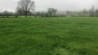 GrowthWatch: Making use of grass in challenging conditions