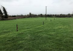 GrowthWatch: Graze paddocks now that you want to be hitting early next spring