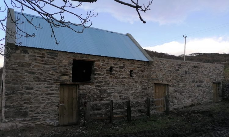 Breathing fresh life into an old derelict outhouse in Co. Galway