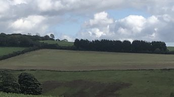 Choices aplenty as several plots of land for sale in Co. Kildare