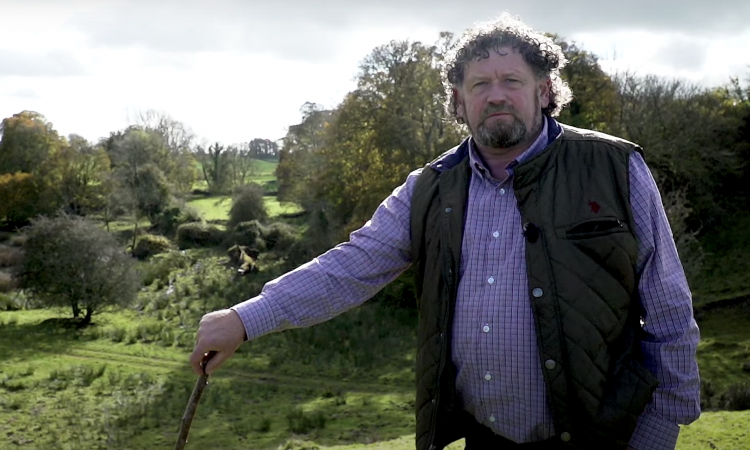A farmer and his magical field: How fairies have 'kept the land sacred in Ireland'