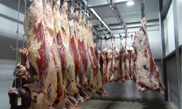 Calls for German meat plants to work longer hours to aid backlog
