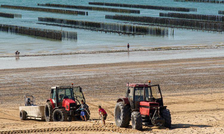 McConalogue announces details of aquaculture support scheme