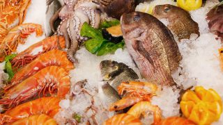 €2m seafood promotion will help claw back business lost to Covid-19