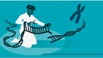 Researchers who can change DNA of animals win Nobel Prize