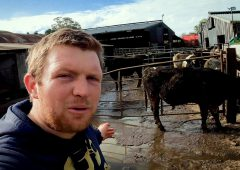 From farming simulator to YouTube farming superstar