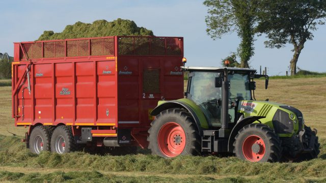 Silage quality: Focus on making high DMD first-cut silage