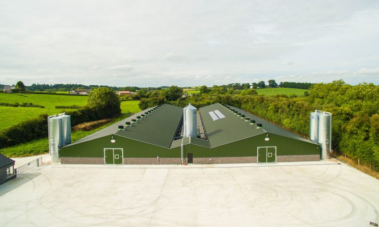 Ideal Home project awarded Innovate UK grant for ground-breaking poultry house design
