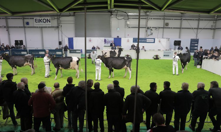 Winter Fair Online to reveal first 'Champion of the Decade'