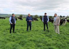 Revised calf rearing system eases workload at Kilkenny dairy farm