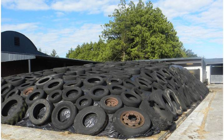 Reducing purchased concentrates with improved silage quality