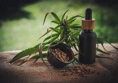 EU court ruling on CBD a 'lifeline' for Ireland's hemp industry