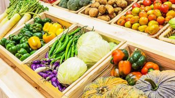 Joint agri-food research funding programme between DAFM and DAERA launched