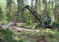 Contractors 'must be included' in new forestry policy group
