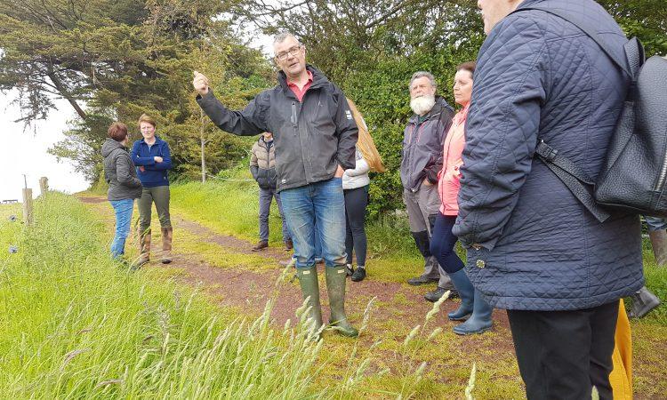 Limerick's Rockfield farm aims to stay social