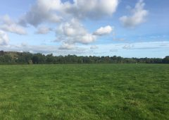 Bellewstown land parcels hit the market