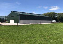 重新聚焦:科克公司可容纳多达140头小牛的新住所
