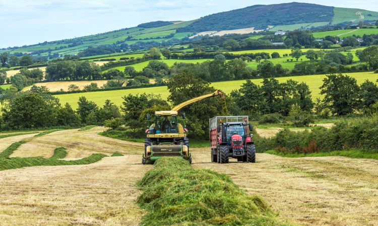 'This harvester handles lumps a lot better; we've never managed to choke her with grass'