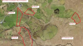 60.28ac suited to grazing for sheep, cattle and horses on the market in Co. Galway