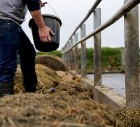 Price farmers get 'not keeping pace with increase in inputs'