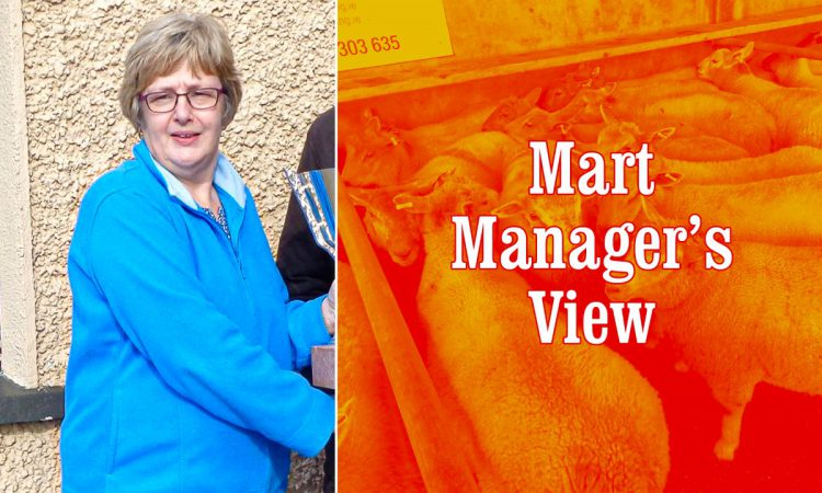 Fat lambs reach €133/head at Ballinasloe Mart's final sheep sale of 2020