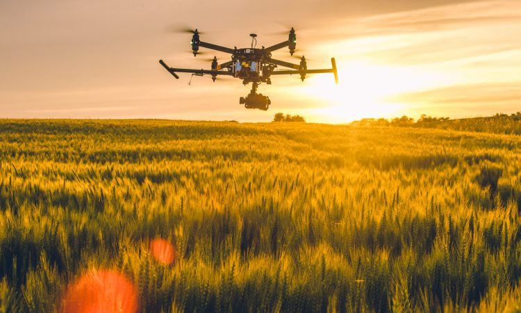 Role of digital in securing green rural economy to go under spotlight