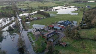 Environmental group succeeds in stalling flood relief works in Roscommon