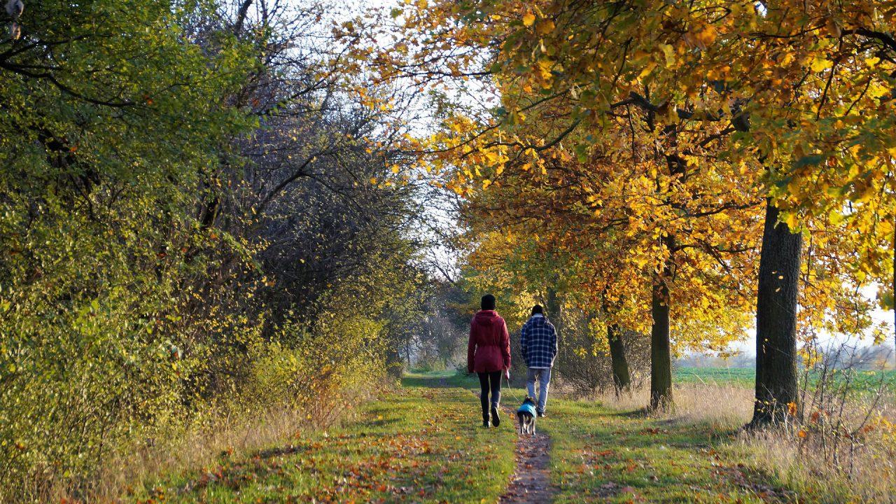 Humphreys announces addition of 31 trails to Walks Scheme
